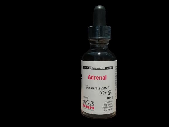 Adrenal Dr. B.